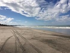 Quad Bike Tracks along the Beach