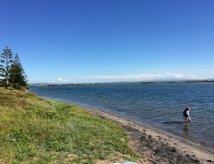 The Estuary - Pukehina