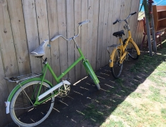 Bikes by Fence