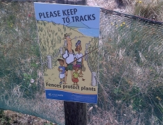 Protect our Dunes Sign