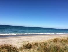 Pukehina Beach (3)