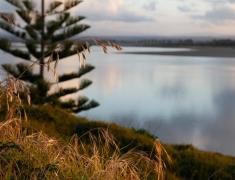 Stunning Vista by the Estuary