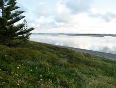 The Estuary (3)