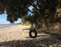 Tyre Swing